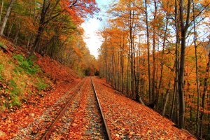 autumn_railroad_by_celem-d5ogfhq